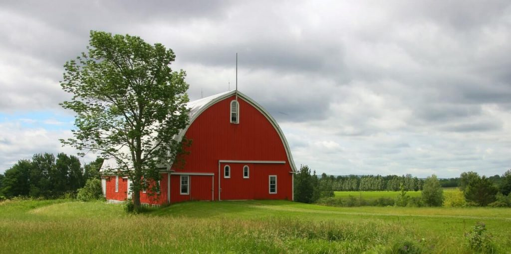 agriculture-architecture-barn-building-259822 (1)